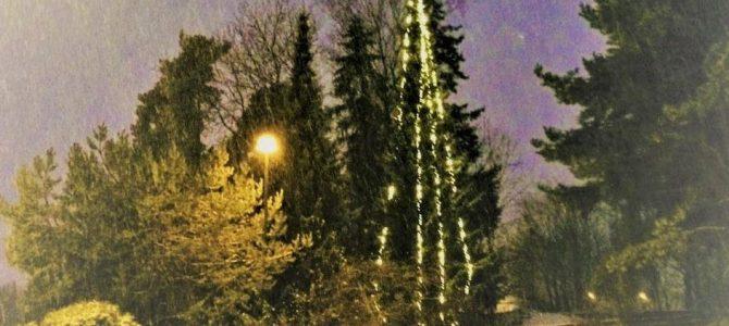 Velkommen til julegrantenning 1. desember